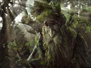 LOTR Trees